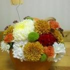 pumpkin_04